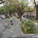 Boulevard Freyre